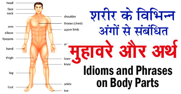 idioms and phrases on body parts
