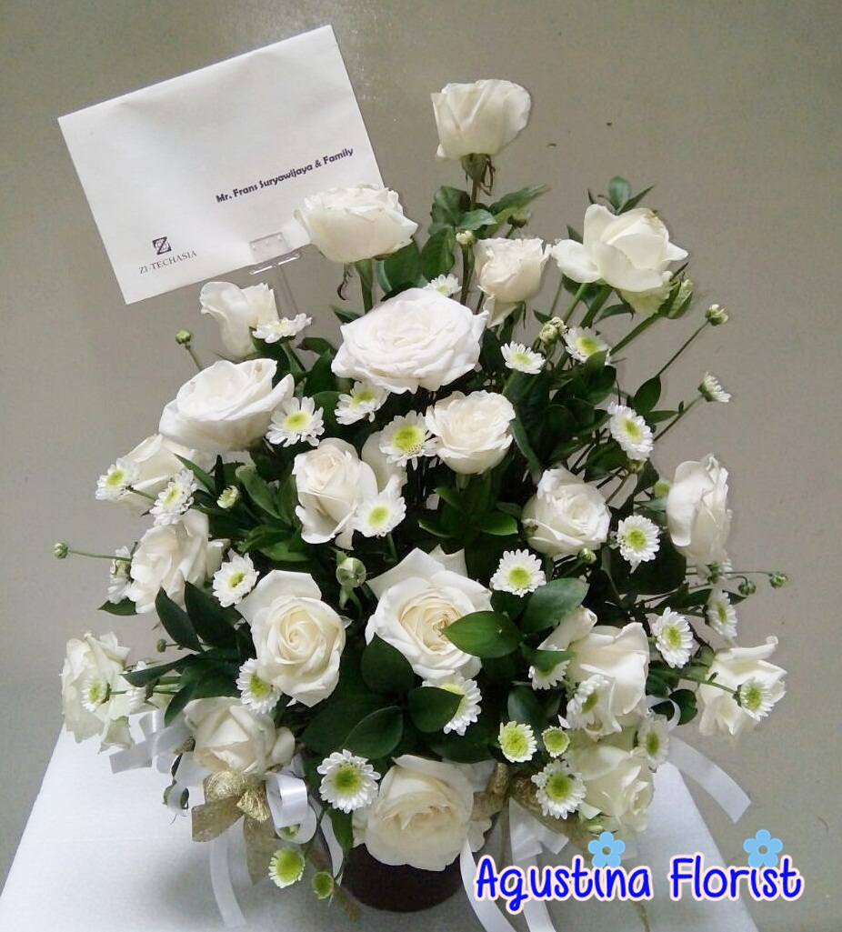 93+ Gambar Bunga Mawar Putih Yang Cantik Terlihat Keren