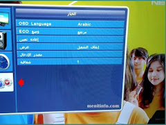 Cara Ubah Bahasa di Menu Setting TV LED Polytron