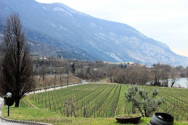 Albino Armani winery Veneto