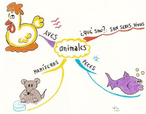 mapa mental para niño hecho a mano sobre los animales