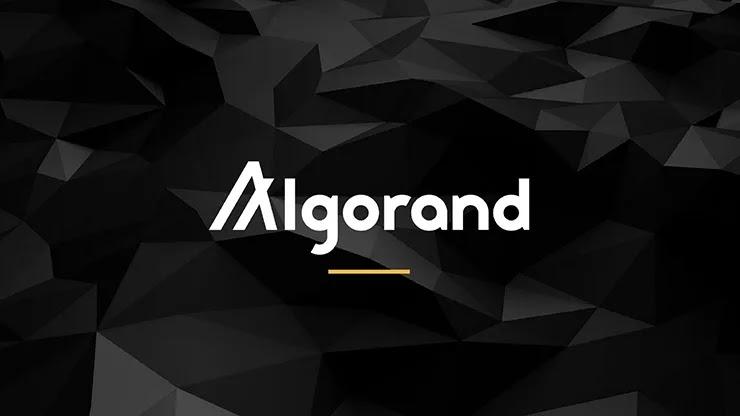 Arrington Capital инвестирует миллионы в расширение экосистемы Algorand
