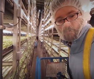 Aero Farms' indoor farm in New Jersey.