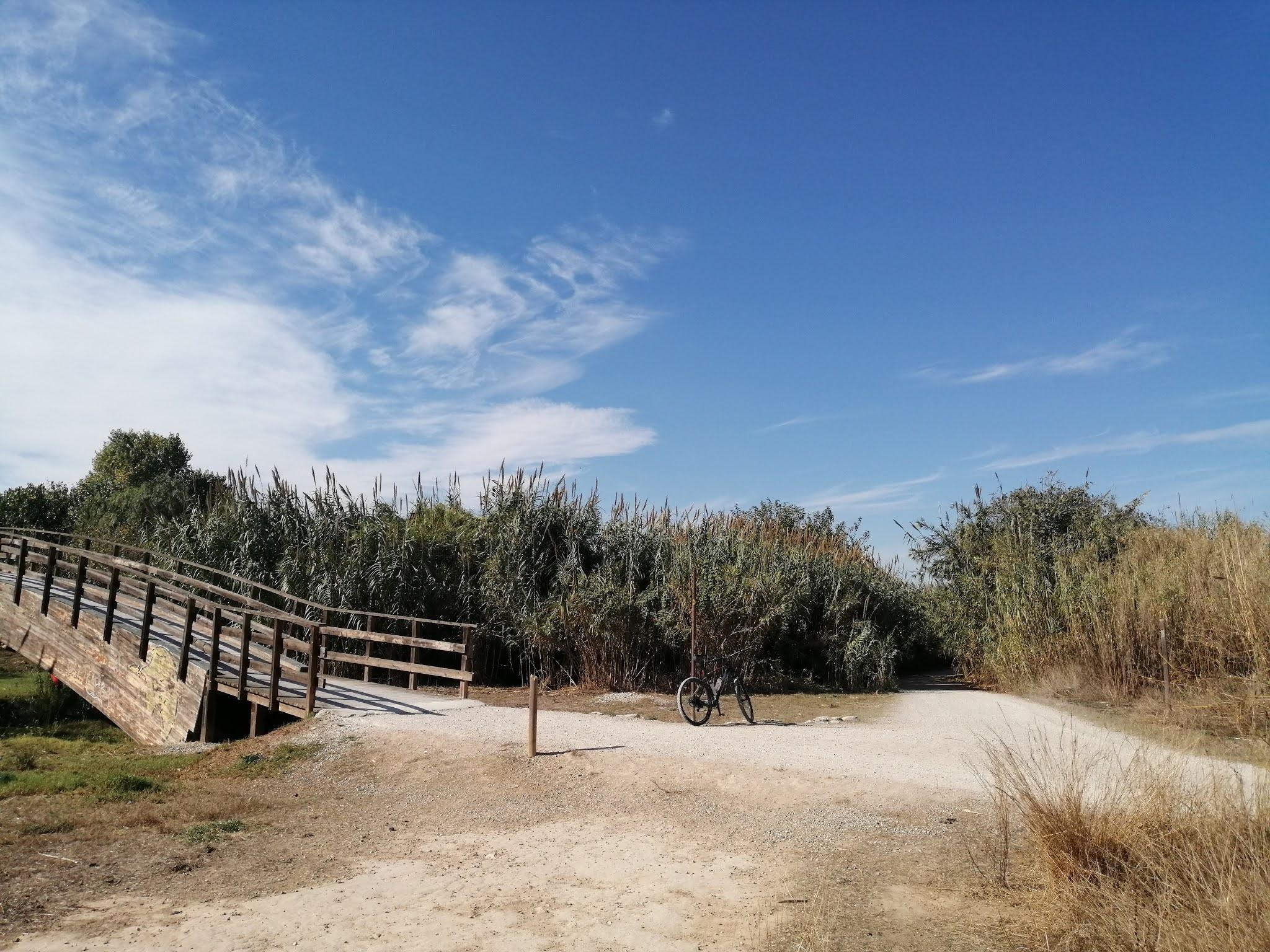 Wooden bridge over the River Turia, Valencia
