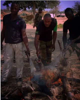 """<img src="""" Agile-Soldiers-in-the-Sambisa-forest-stumble-upon-bush-pig-(photos) .gif"""" alt="""" Agile Soldiers in the Sambisa forest stumble upon bush pig (photos) > </p>"""
