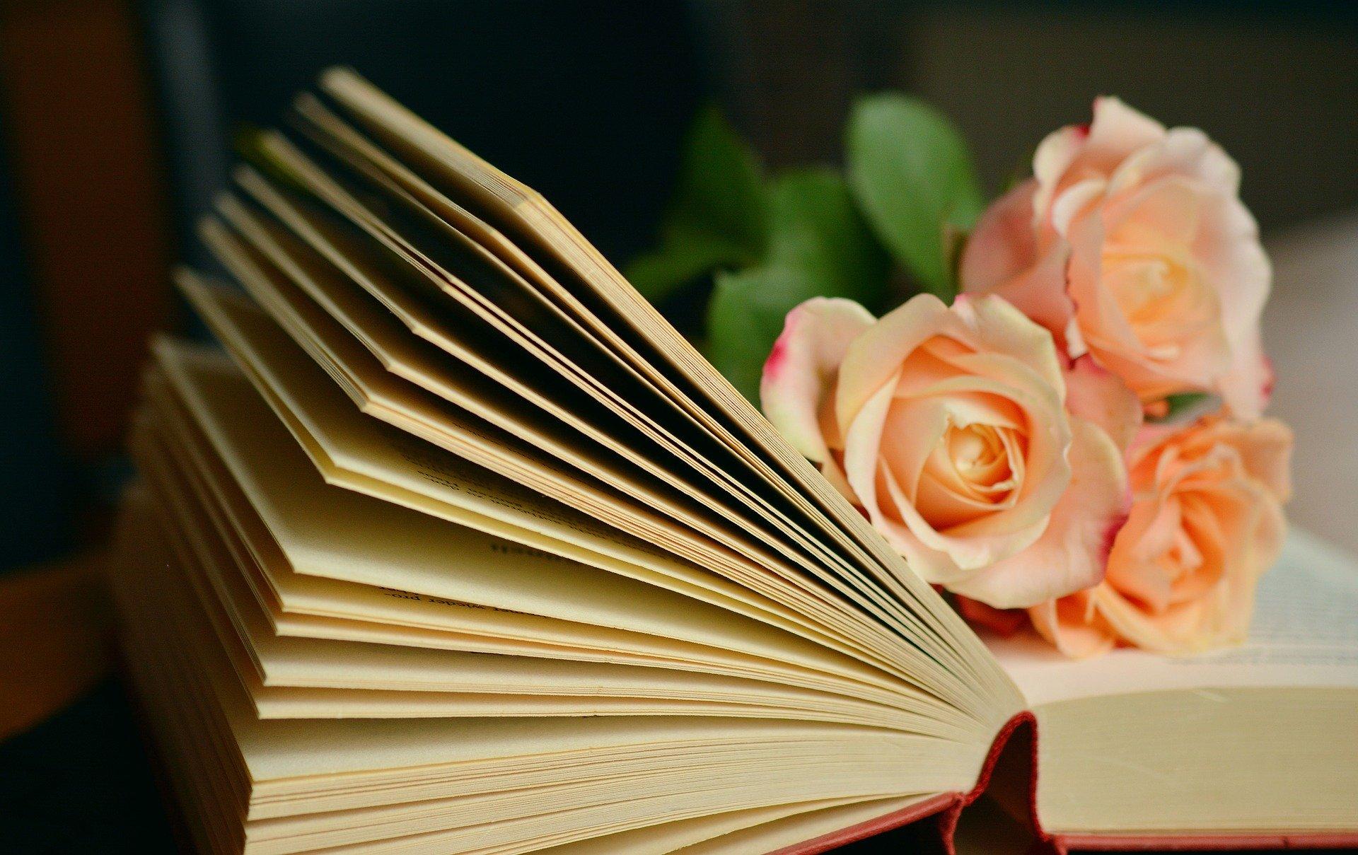 12 książek na rok - czy dam radę ?