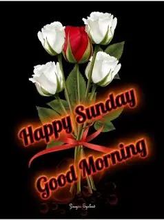 Sunday%2BGood%2BMorning%2B%2BImages%2BIn%2BHindi%2B%252836%2529