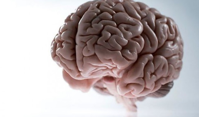 Kenali Gejala Penyakit Kanker Otak