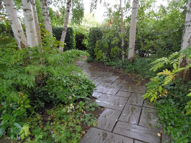 ogród leśny, ścieżka z płyt kamiennych