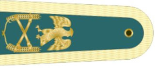 ranks-in-nigerian-army-badges-insigna