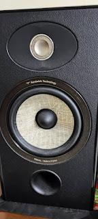 Focal Audio Aria 906 (Used) IMG-20210812-WA0025