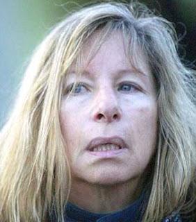 Il Blog Di Andrea Effetto Streisand