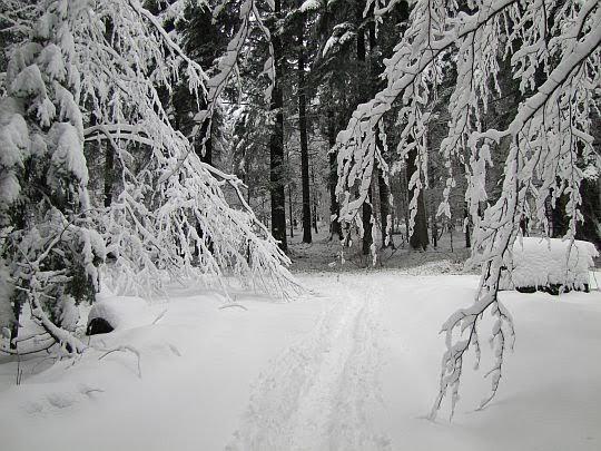 Szlak na Kanasiówkę.