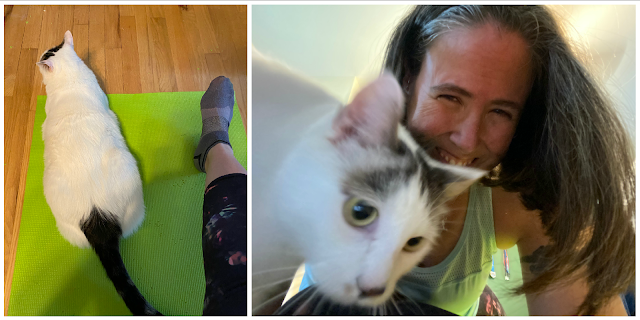 Two photos: on left Pickles sitting on a green yoga mat next to my outstretched leg; on right: me laughing because Pickle is butting up against my head between me and the camera