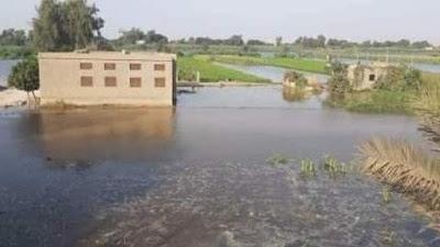 عاجل: وزارة الري تعلن استمرار فيضان النيل حتى منتصف نوفمبر القادم
