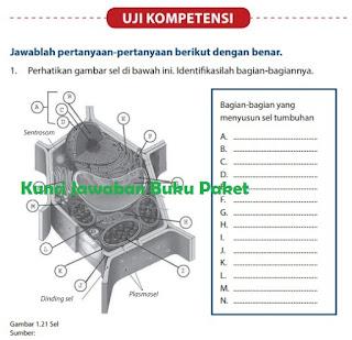 Kunci Jawaban Buku Paket IPA Uji Kopetensi kelas 7 semester 2 halaman 26 27 Kurikulum 2013