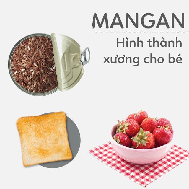 Hướng dẫn Mẹ Bầu bổ sung Mangan - Chất hình thành xương cho thai nhi