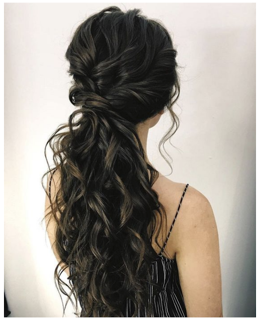 ponytail palm 2019