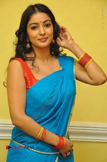 Telugu Actress Vaibhavi Stills in Blue Saree at Www.Meena Bazaar Movie Opening  0046.JPG