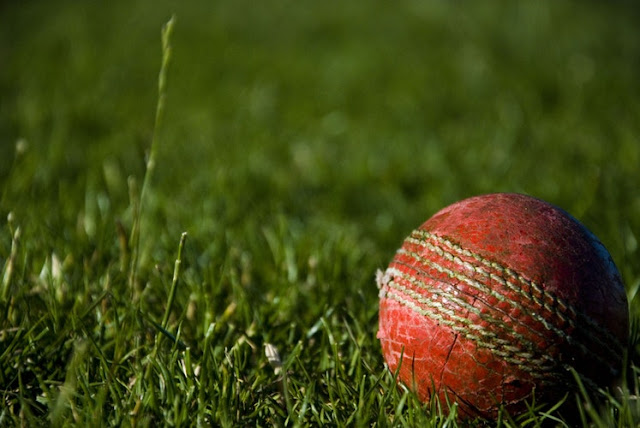 Cricket ball on green grass