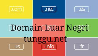 Tips Membeli Domain Luar Negeri