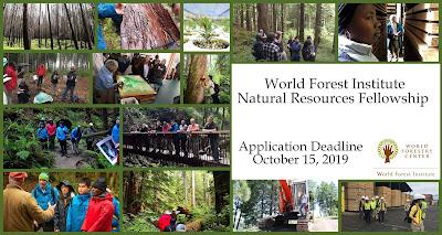 https://www.worldforestry.org/institute/world-forest-institute/international-fellowship/