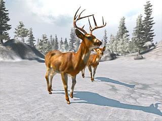 Cabela's Trophy Bucks Full Game Download