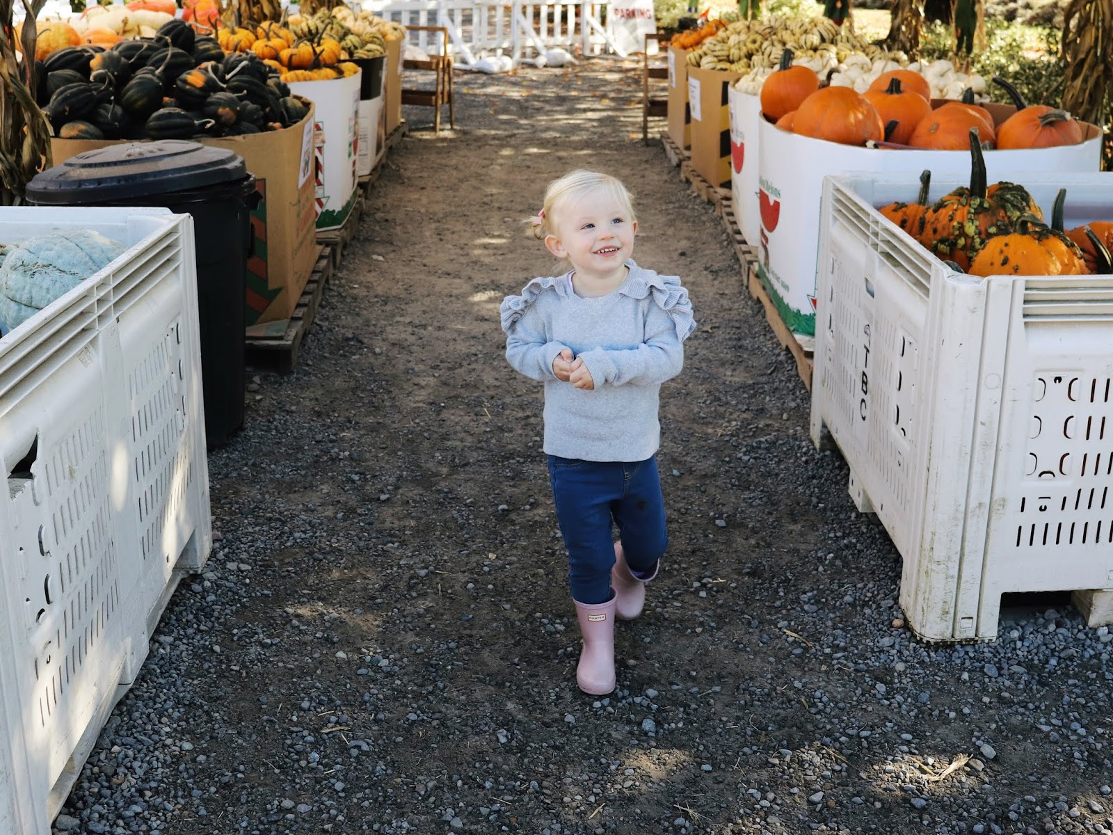 fall bucket list for kids. toddlers