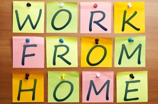 Work from Home Essentials : Things You Should Have to Work Easily From Home