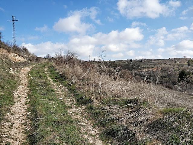 ruta de los almendros