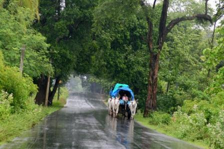 The Indian climate and seasons