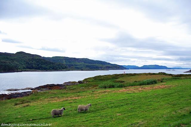 Big Horseshoe Bay, isla de Kerrera (Escocia)