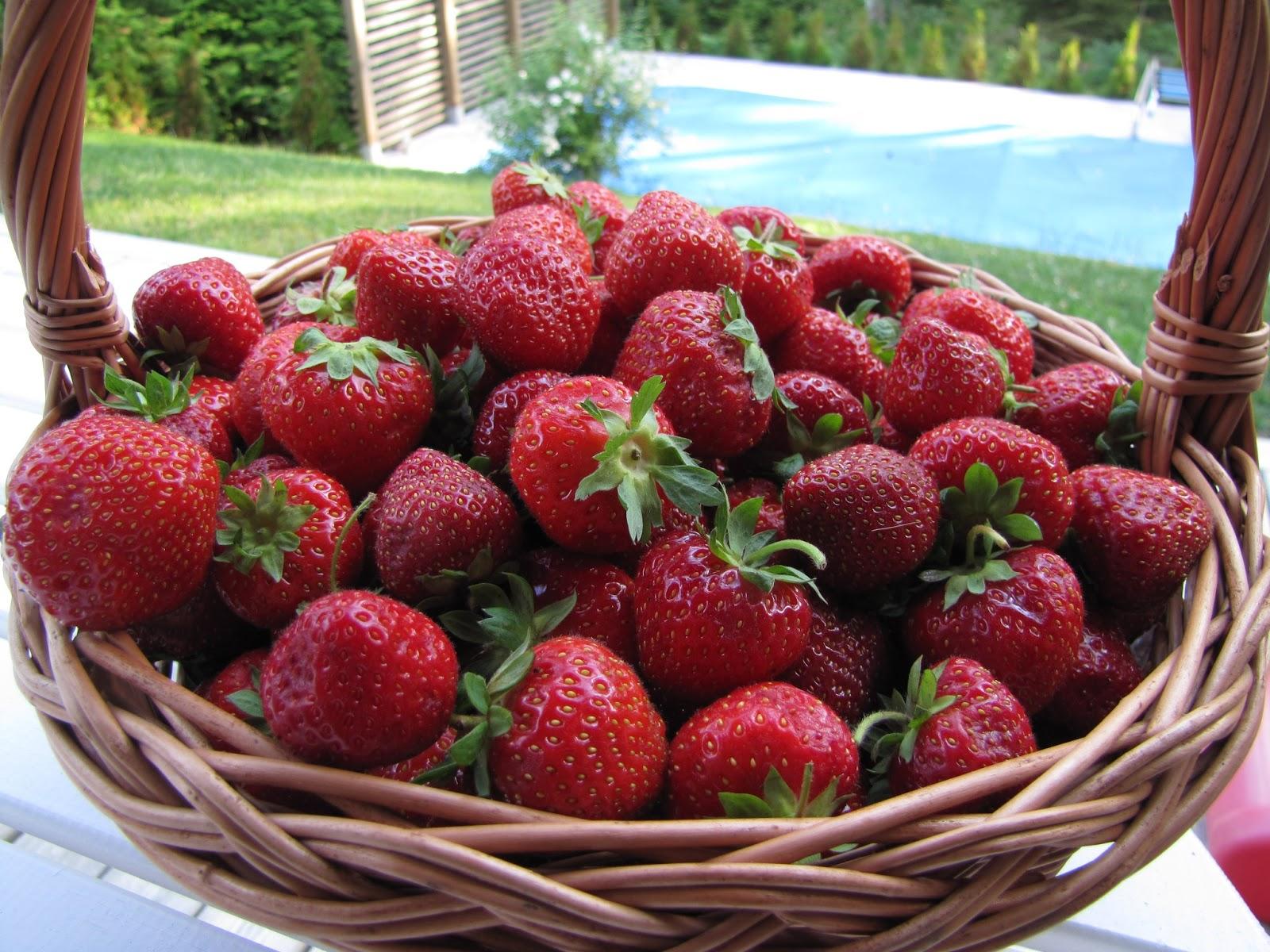 December da mognar jordgubbarna