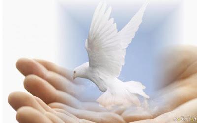 Contoh Renungan Harian Kristen : Perintah Untuk Hidup Kudus