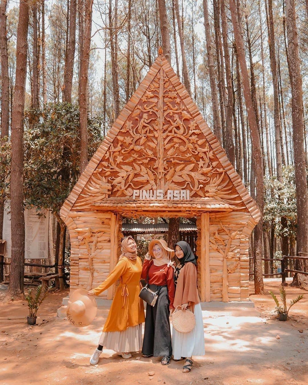 Harga Tiket Masuk Hutan Pinus Asri