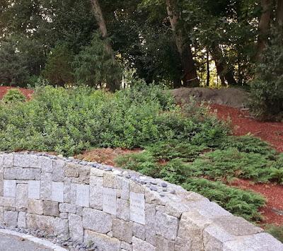 Proctor's Ledge. Execution Site. Gallows Hill. Salem, Massachusetts. 1692 Salem Witch Trials