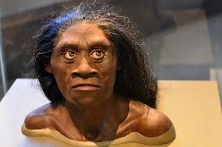 Manusia Purba Homo Floresiensis
