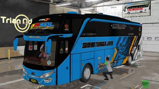 Livery Bussid STJ Baikal SHD Original