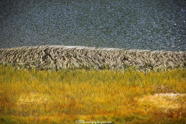 Détails colorés d'un lac de montagne, Mercantour