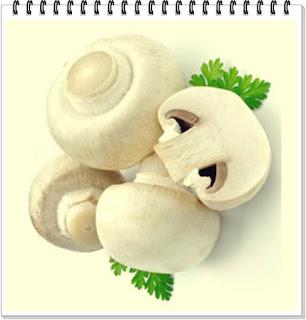 pareri dieta cu ciuperci beneficii forum de nutritie