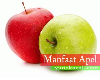 Manfaat Buah Apel Untuk Kesehatan Tubuh Manusia