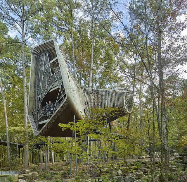 03. Rumah Pohon Bob + Sunny Evans Hot Springs, AR, Amerika Serikat oleh Modus Studio