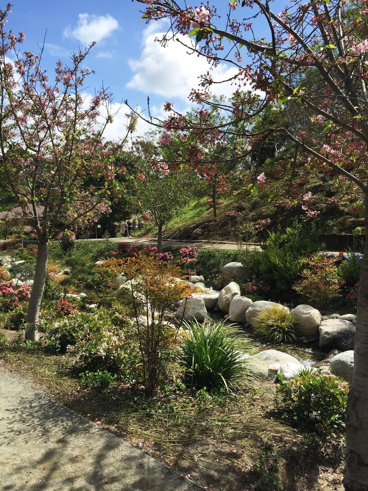 Janeville teaching for Japanese friendship garden