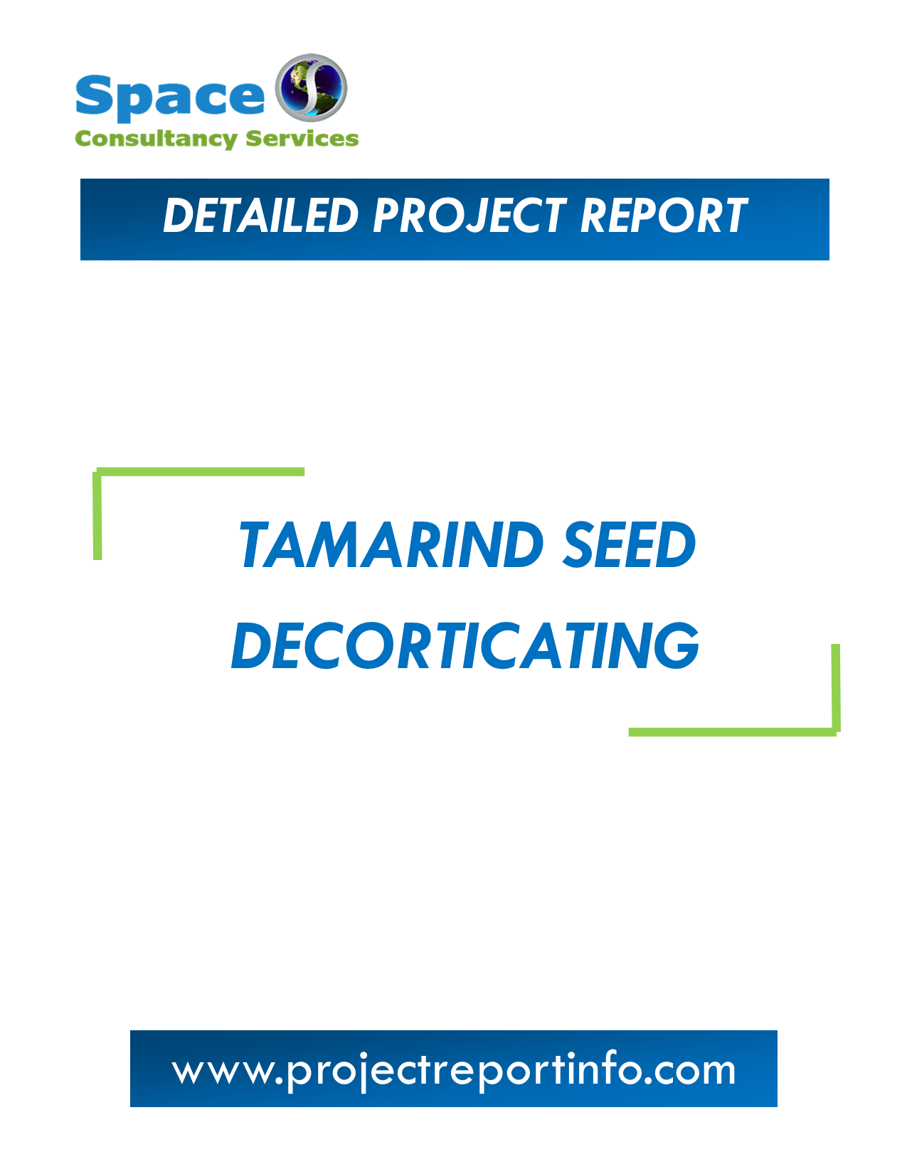 Project Report on Tamarind Seed Decorticating