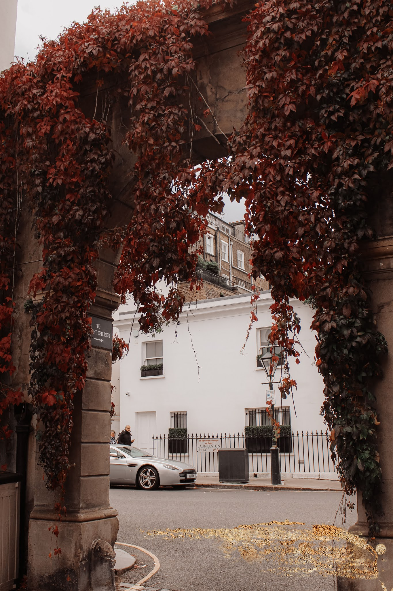 Kynance Mews Autumn Leaves
