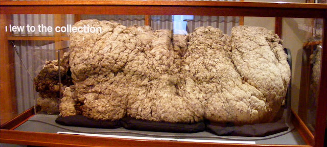 Record breaking fleece of Chris the sheep on display in the National Museum of Australia. Canberra. Photographed by Susan Walter. Tour the Loire Valley with a classic car and a private guide.