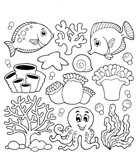 Hình tô màu con vật dưới biển