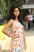 Shamili at Sree Ramaraksha teaser launch-thumbnail-15