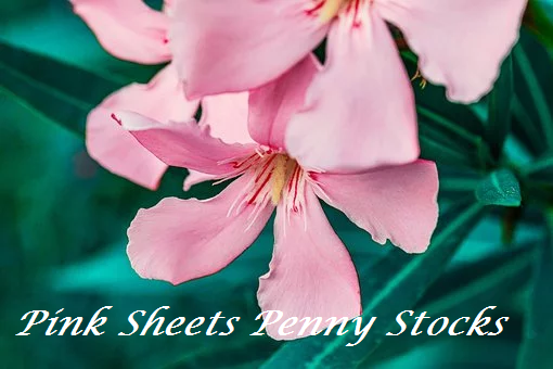 pink sheets penny stocks