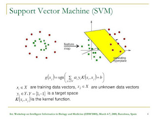 Support Vector Machine structure